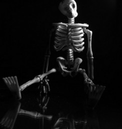 seated skeleton