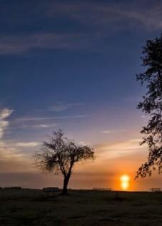 Hood-Canal-sunrise