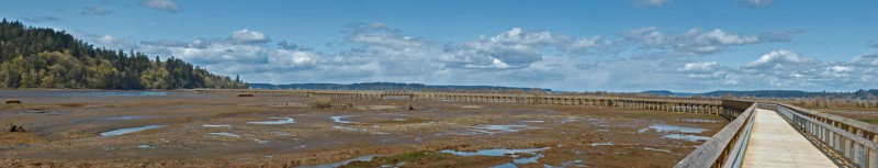 Nisqually NWR boardwalk panorama