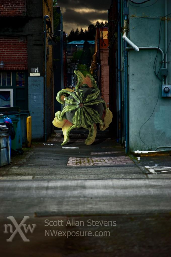 Creepy Alley Gourd