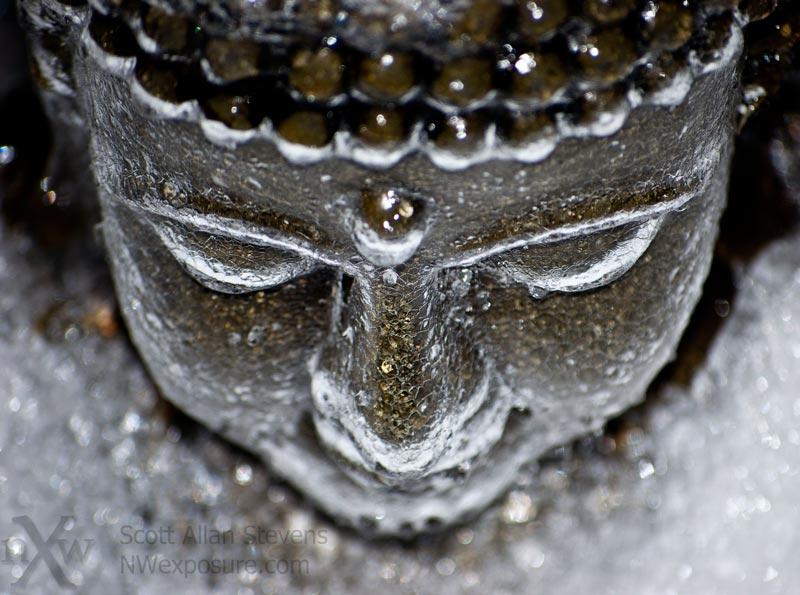 Iced Buddha