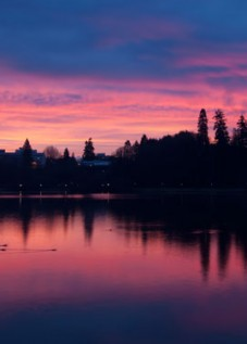 Sunrise-Capitol-Lake