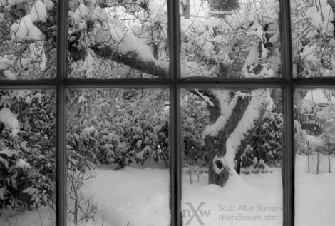 snow-day2012