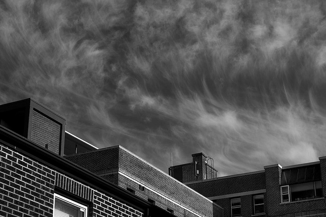 August: B&W Study of Roofs & Sky