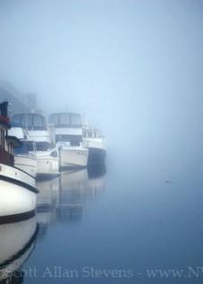 Magic of Fog