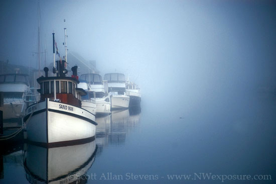 The Magic of Fog - photo by Scott Allan Stevens