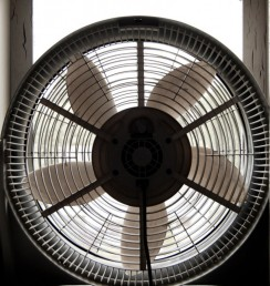 fan-in-window