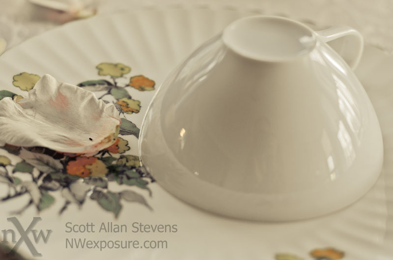 tea party - ©2012 Scott Allan Stevens, www.NWexposure.com